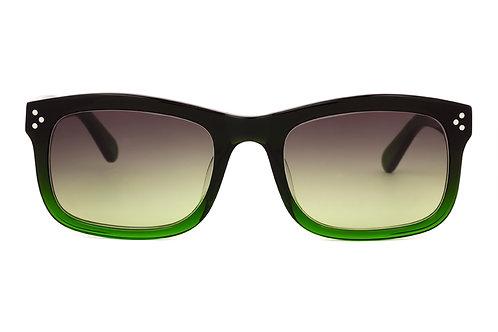 Benjamin M81 Sunglasses