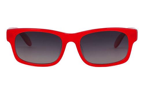 Jordan C137 Polarised Sunglasses