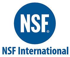 NSF COMBINED LOGO BLUE.jpg