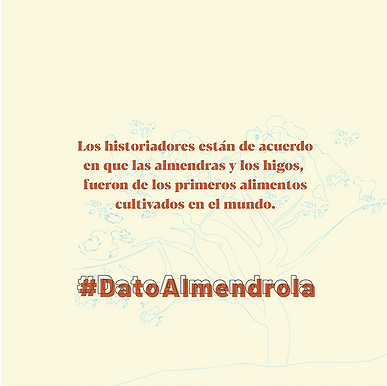 Almendrola_Marzo2020-16.png