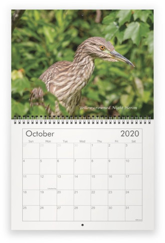 October 2020