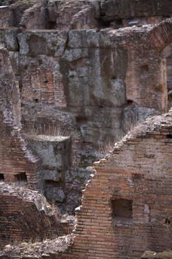 Coloseum floor45use