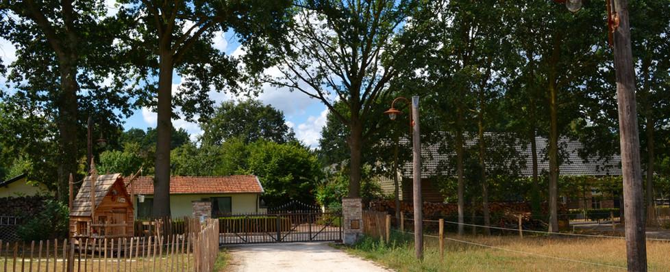 Pad achter Grootenhout 4