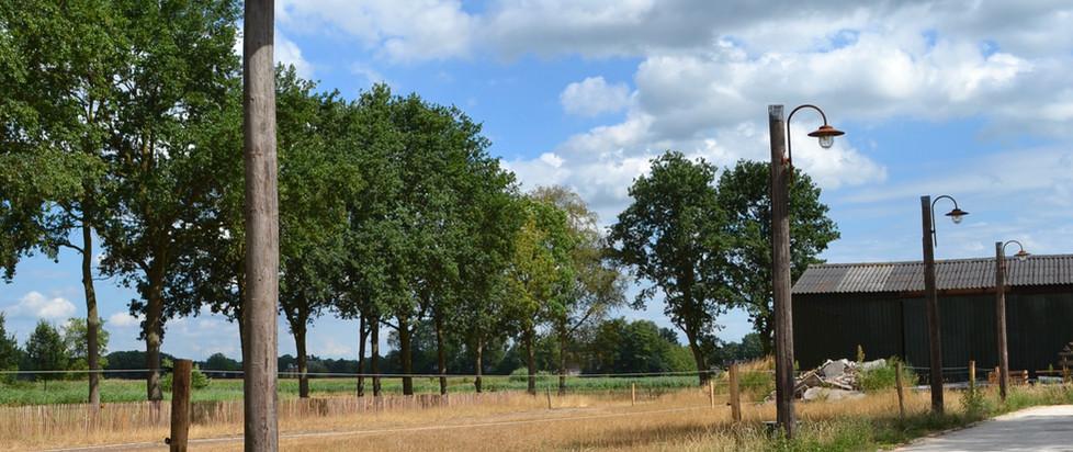 Pad naar Grootenhout 5