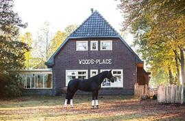 Woodsplace.jpg