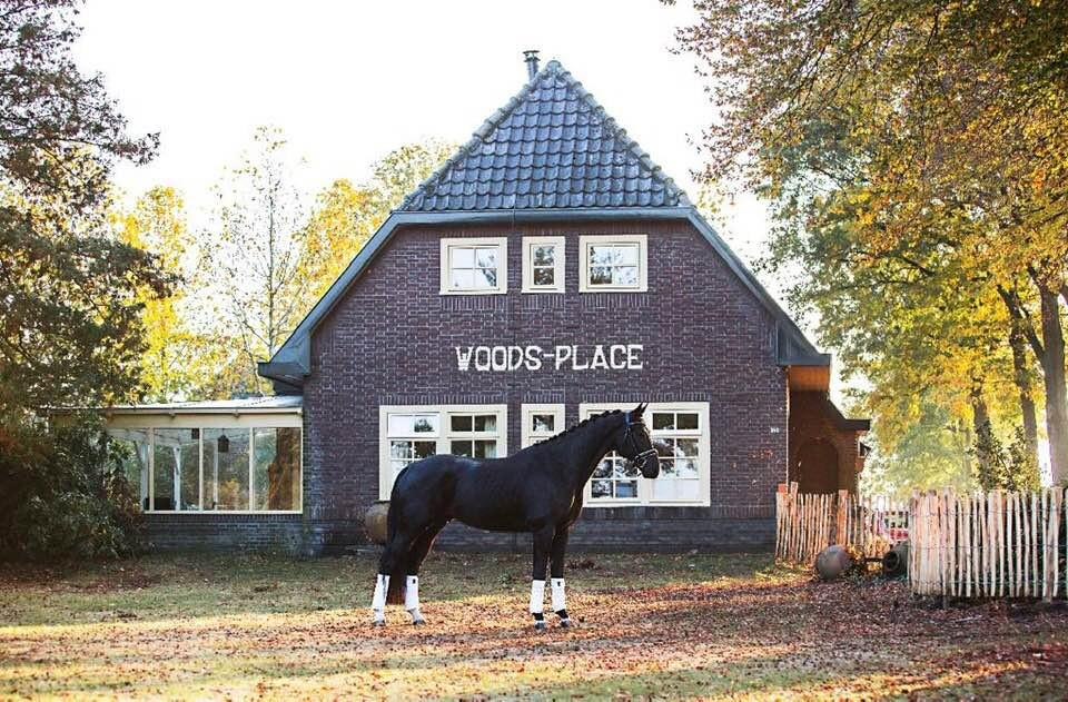 Woodsplace voorkant