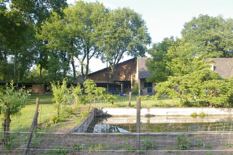 Tuin Grootenhout 1