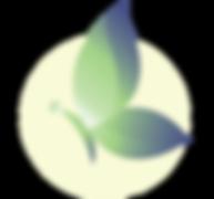 SandyFain_Logo_lg.png