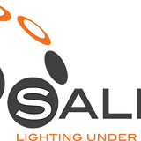 logo_salex_edited_edited.png