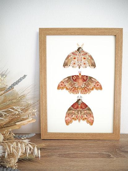 Dark Moth Trio A4 A3