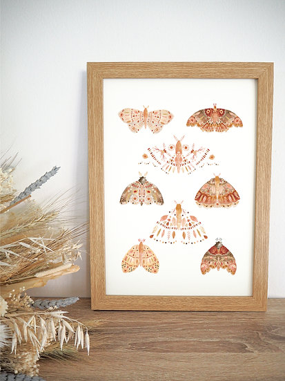 Moth Collage A4 A3