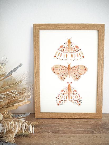 Light Moth Trio A4 A3