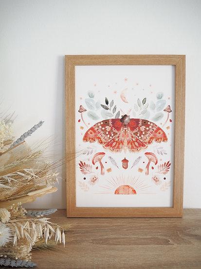 Mirror Moth A4 A3