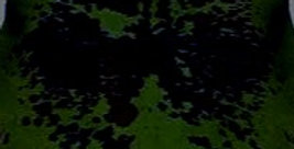 Cow skin NORMANDY- 高級牛毛皮ラグ