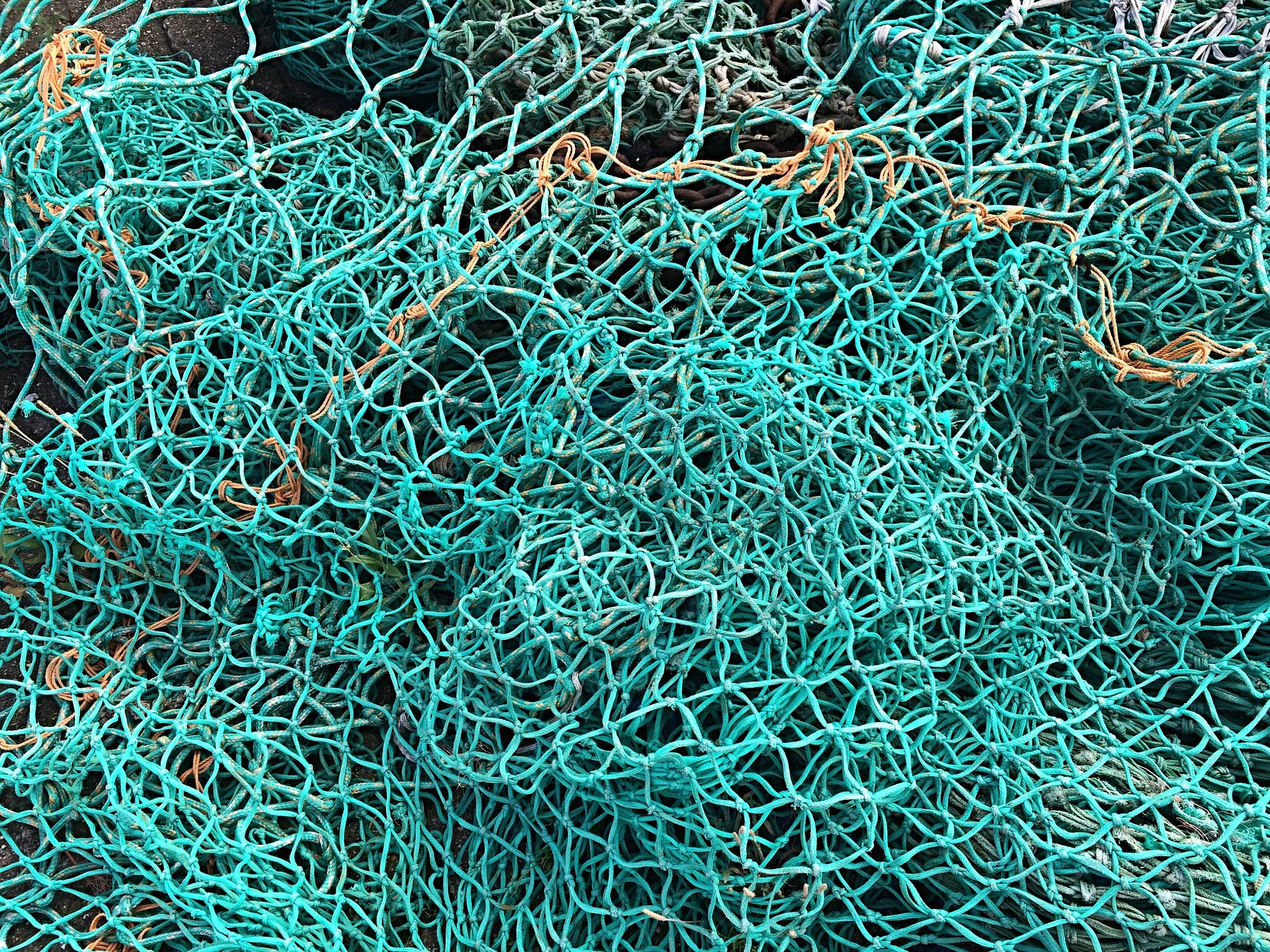 fishing-net-1583687_1920
