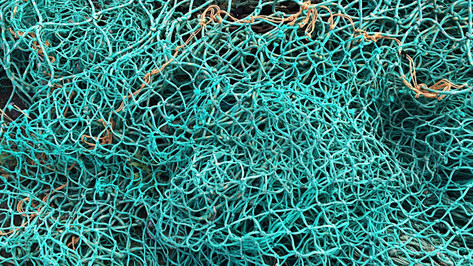 fishing-net-1583687_1920.jpg
