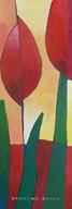 2012_Tulipa8_Acryl_50x60_WIX.jpg