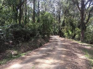 Meandering-around-the-220-acres-enjoying