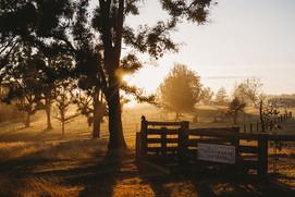 Sunrise-Mogendoura.jpg
