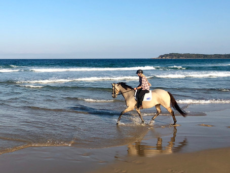 The ultimate equine escape!