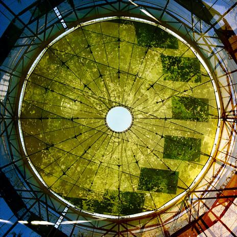 green1web.jpg