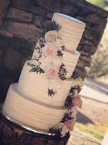 Wedding season! Congratulations Christina & Justin!
