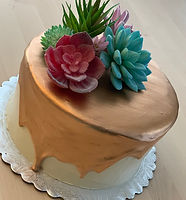 Succulents Rose Gold Drip Cake