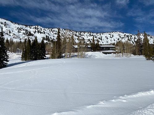 Alta Ski 2002132