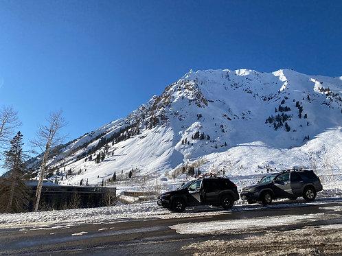 Alta Ski 2002134