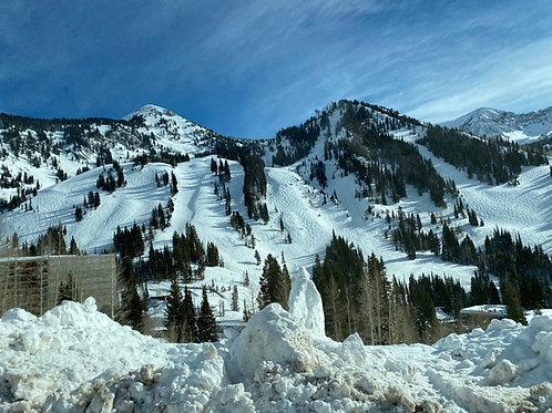 Alta Ski 20021310