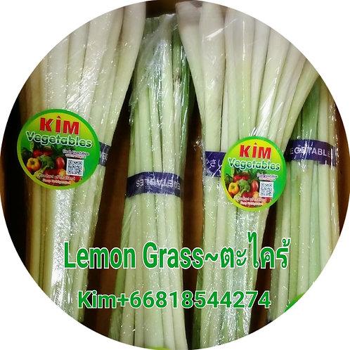Lemon grass-ตะไคร้