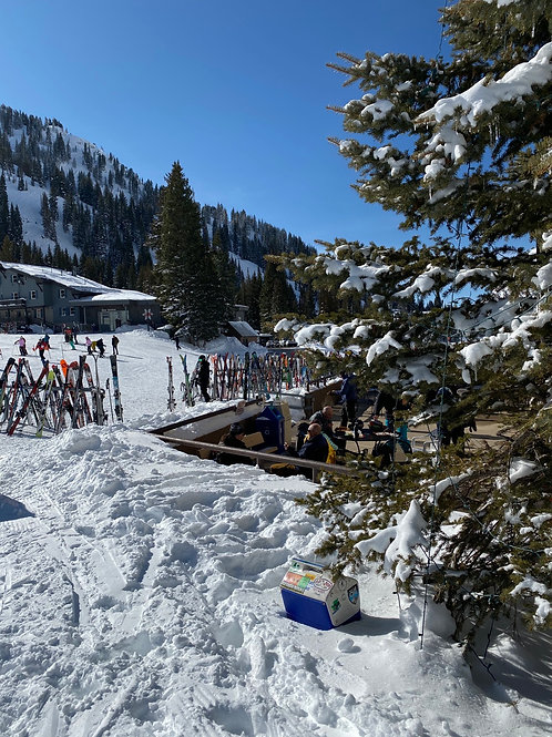 Alta ski