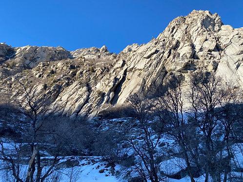 Alta Ski 2002136