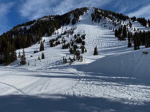 Alta Ski 2002131