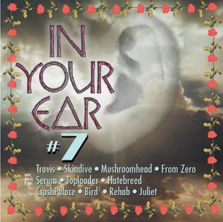 IN YOUR EAR ROCK SAMPLER