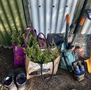 planting gear.jpg