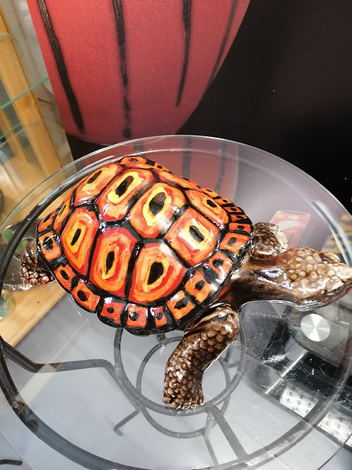 STUNNING 33cm large handpainted tortoise another beauty