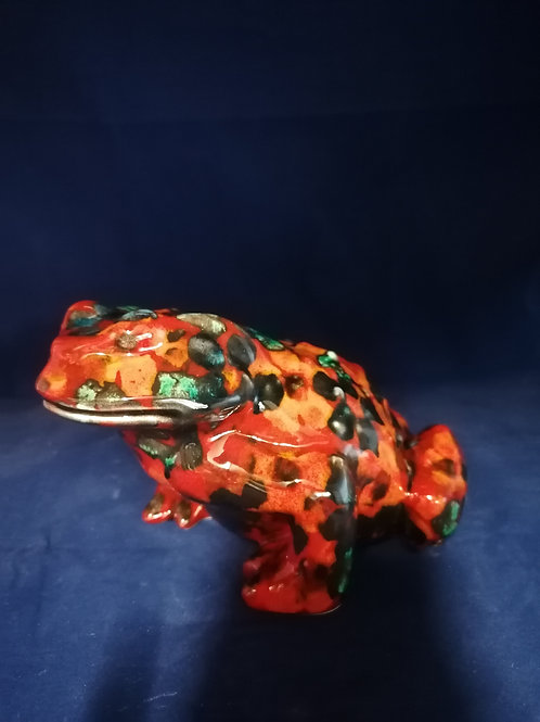 20x11cm toad made to order handpainted with a fusion of colours
