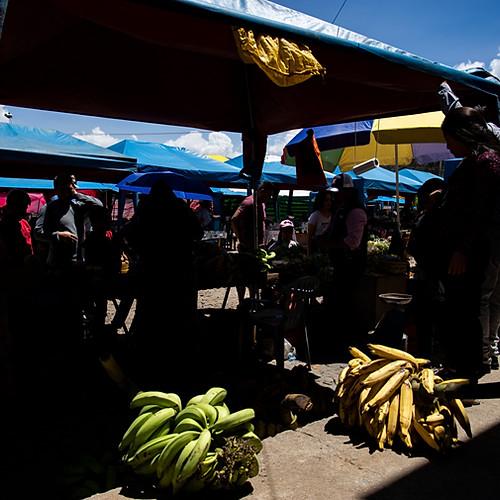 Itinerancia en Baños