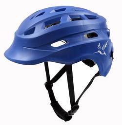 Hummingbird Helmet1