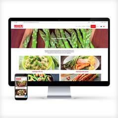 PROMOTIONAL WEBSITES