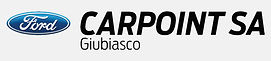 Carpoint_grigio.jpg