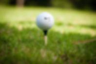 Chickasaw Gofl Course - Golf Ball