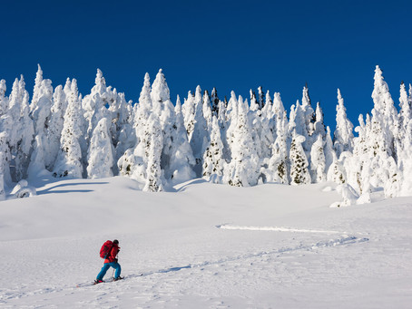 How well do backcountry skis and ski boots gear work on groomed slopes?