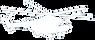 PowderWeGo-Heli-ski-spécialisation-trav