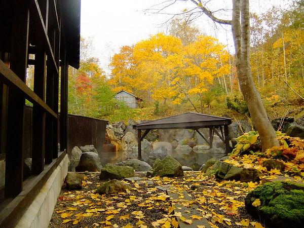 Hokkaido Niseko Annupuri Onsen.jpg