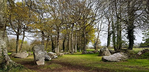 megalithes-pleslin-trigavou-cotes-darmor