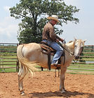 Disengaging-Building Trust for MoreTrust. Larry French Horsemanship