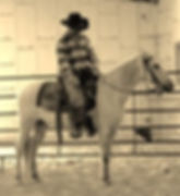 Chalenge yorself with courage. 3L Horsemanship Clinics Larry French/Moro,Arkansas