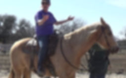 The Why behind each horse problem. 3L Horsemanship- The fundamentals- Larr Frenc/Arkansas